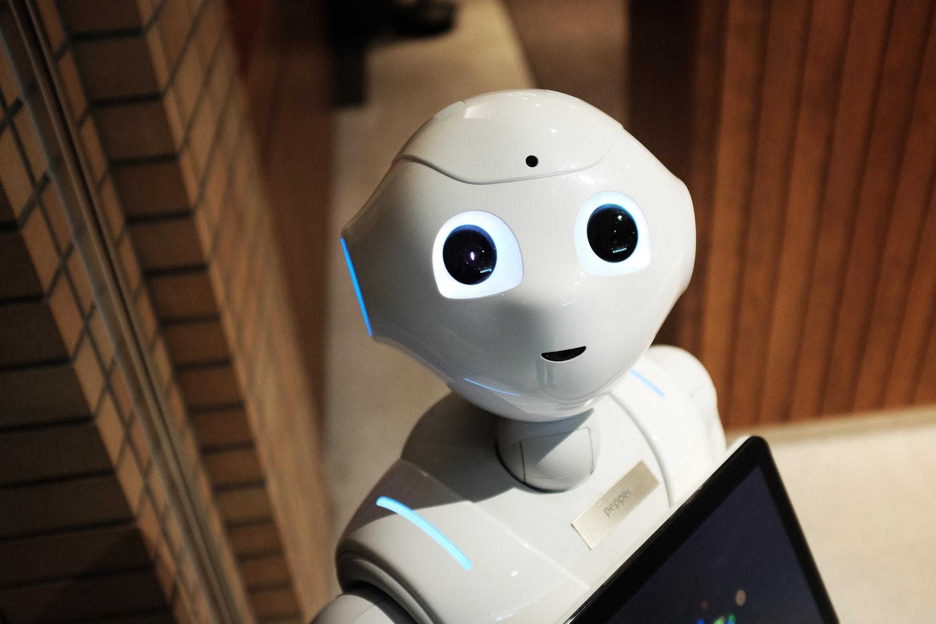 Kleiner weißer Roboter steht im Flur und schaut in die Kamera.