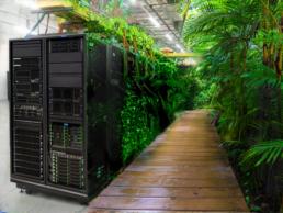 Animation eines Serverraums, der langsam zu einem grünen Dschungel wird.