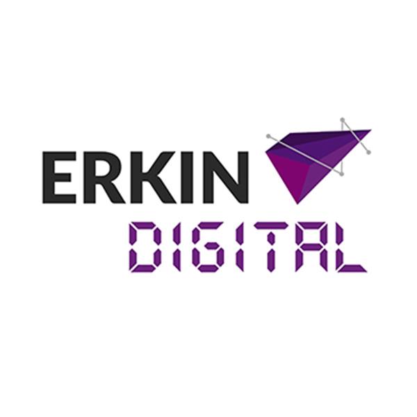 Logo Erkin Digital