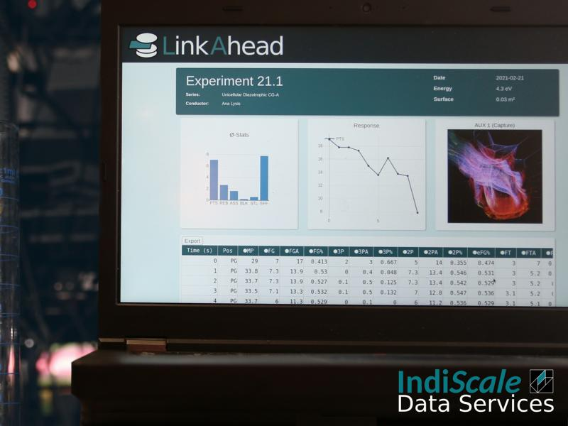 Computer-Bildschirm mit dem Programm LinkAhead